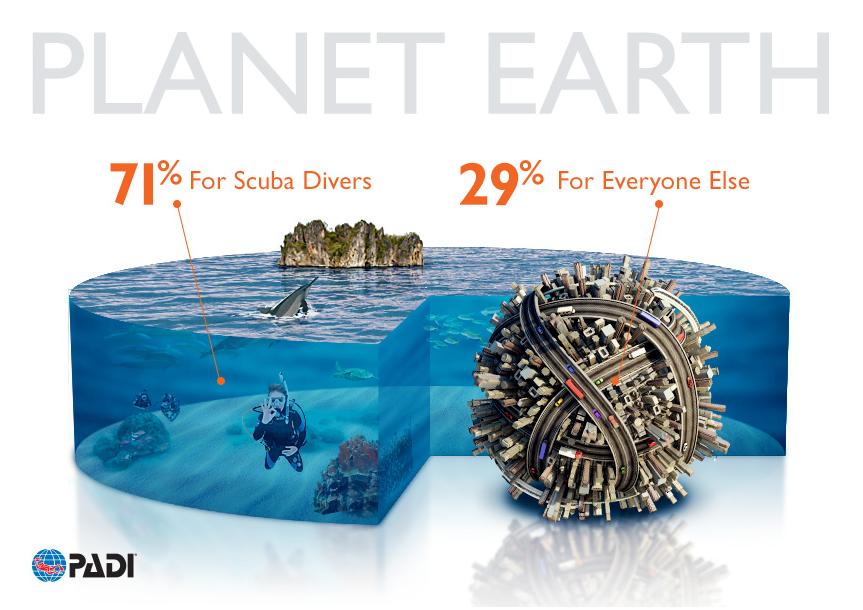 padi-planet earth